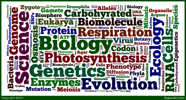 Biology-Word-Cloud-2